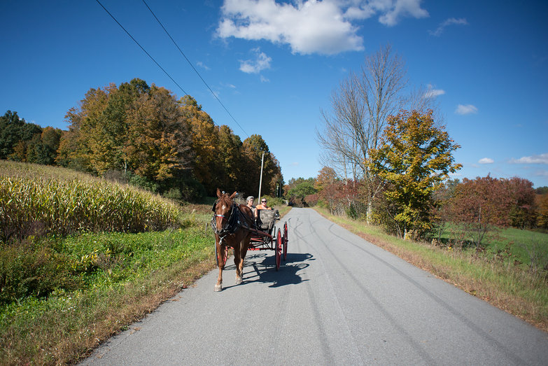 Washington County Draft Horse Drive