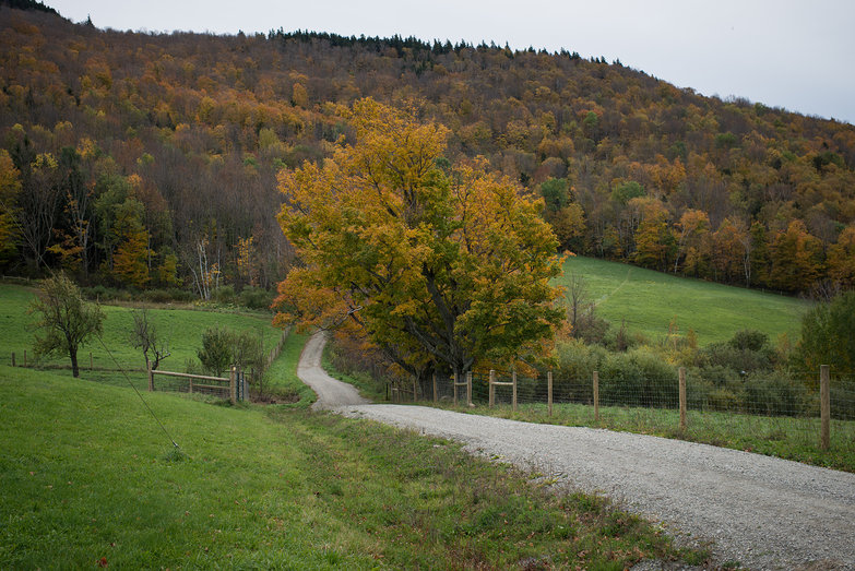 Merck Forest & Farm Road