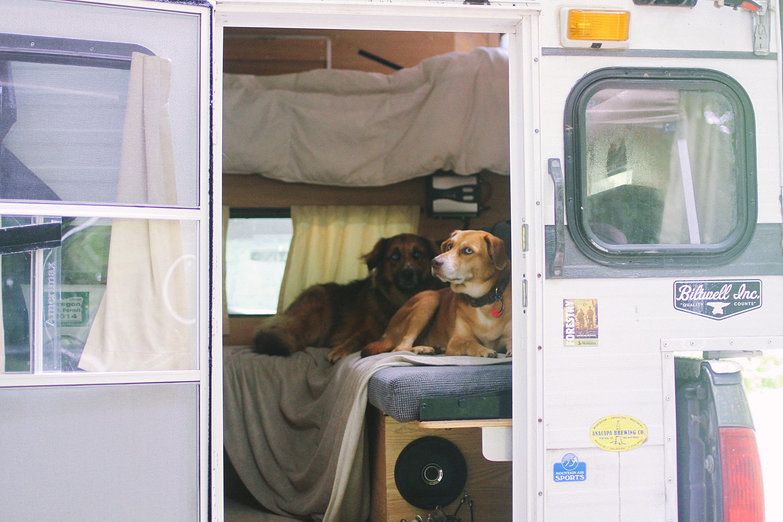 Fitz & Malta in Truck Camper (by Natasha)
