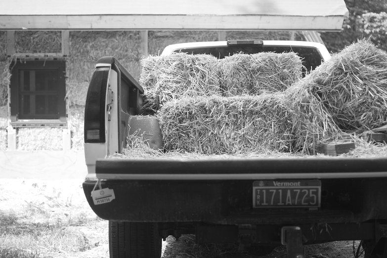 Bales in Truck (by Natasha)