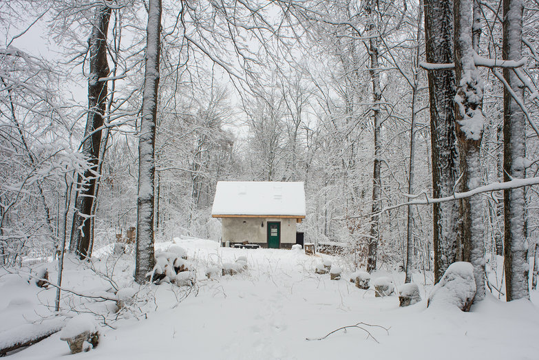 Little (Straw Bale) House in the Big, Snowy Woods