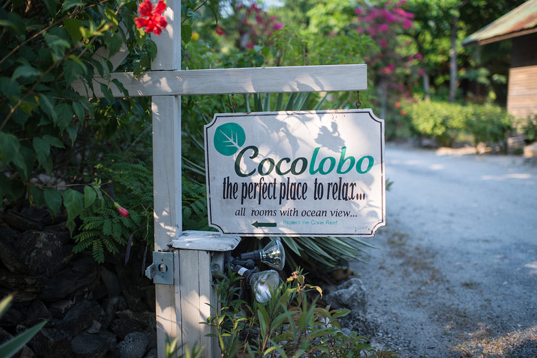 Coco Lobo: The Perfect Place to Relax