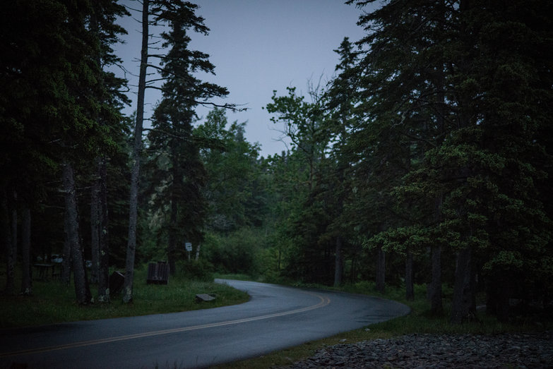 Road to Campsite at Dusk