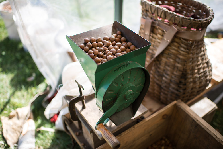 Grinding Acorns at Common Ground Country Fair