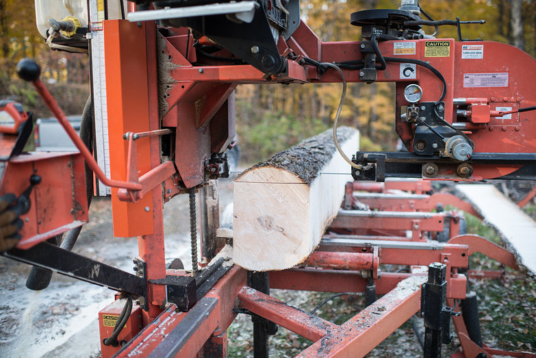 Wood Mizer Cutting Maple Tree