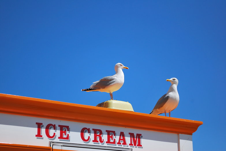 Fancy some ice cream?