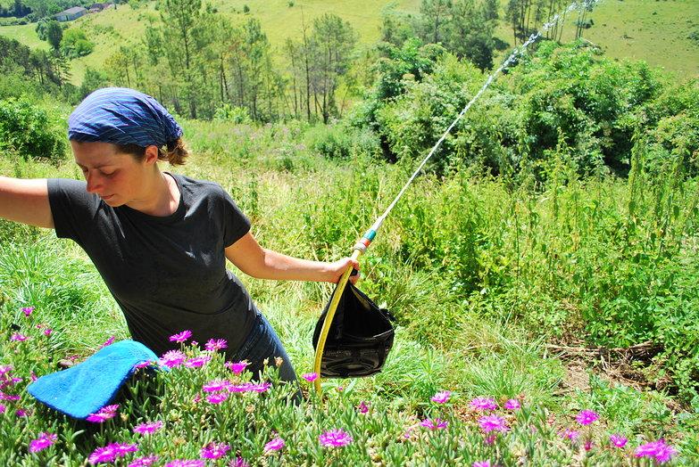Tara Cleaning Panniers