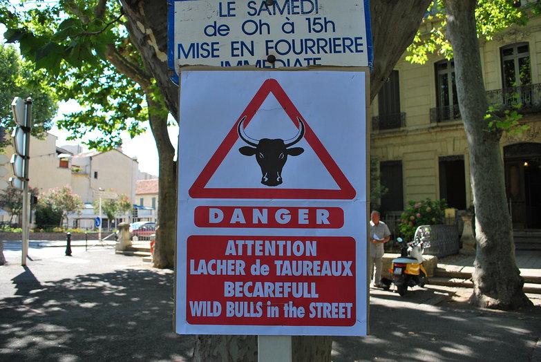 Danger: Bulls