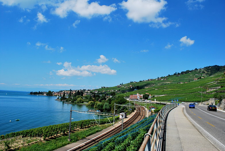 Lake, Train, Road, Grapes