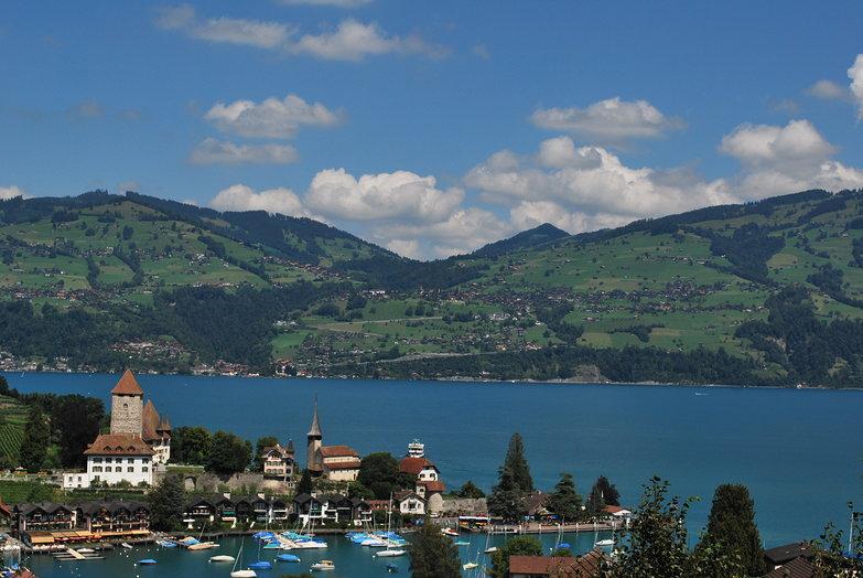 Lake Thun View