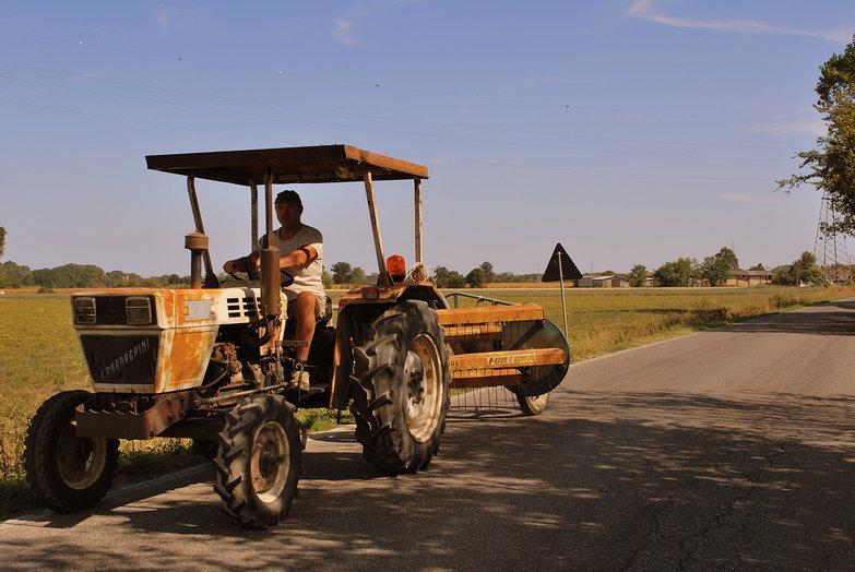 Italian Farmer