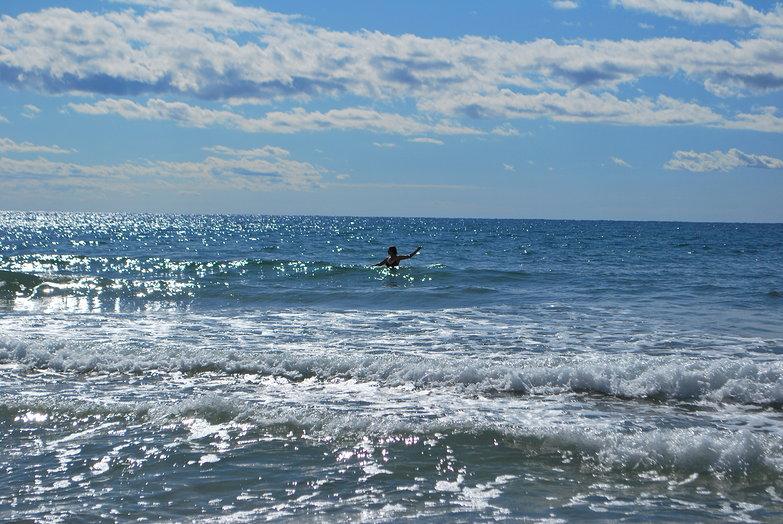 Tara in the Ocean