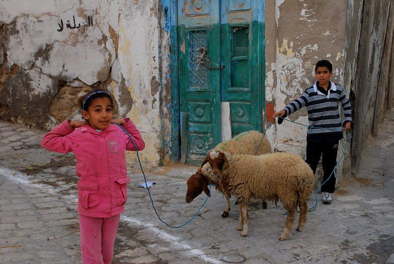 Sousse Medina Kids w Sheep