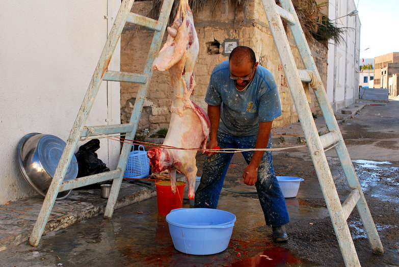Eid al-Adh Sheep Slaughter