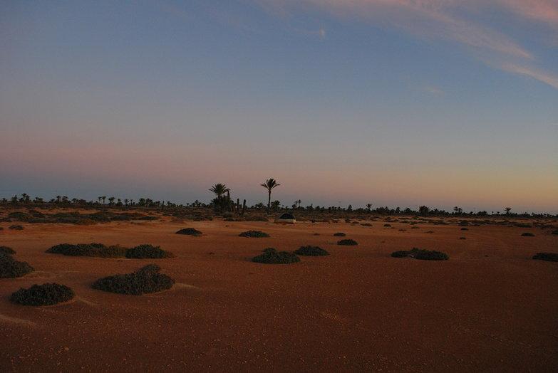 Desert Island Camp