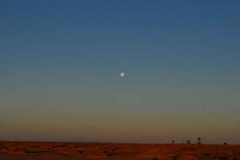 Moonset Over Desert