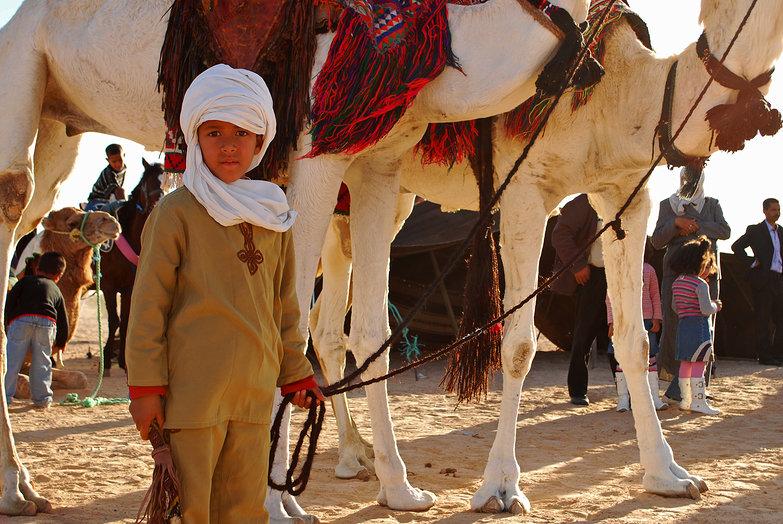 Boy & His Camels