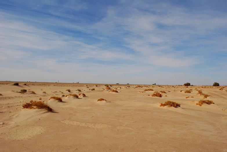 Tunisian Desert Scenery