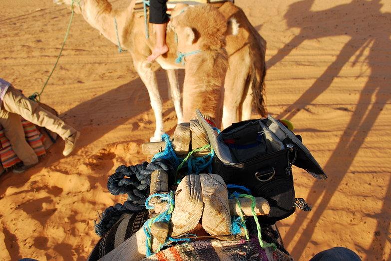 ThinkTank Digital Holster 10 On Camel