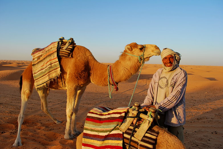 Camel Guide