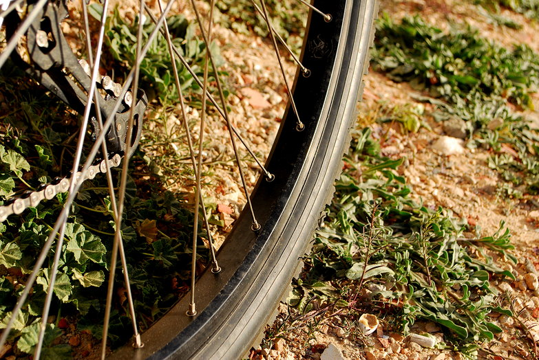 Velocity Psycho & Schwalbe Marathon XR