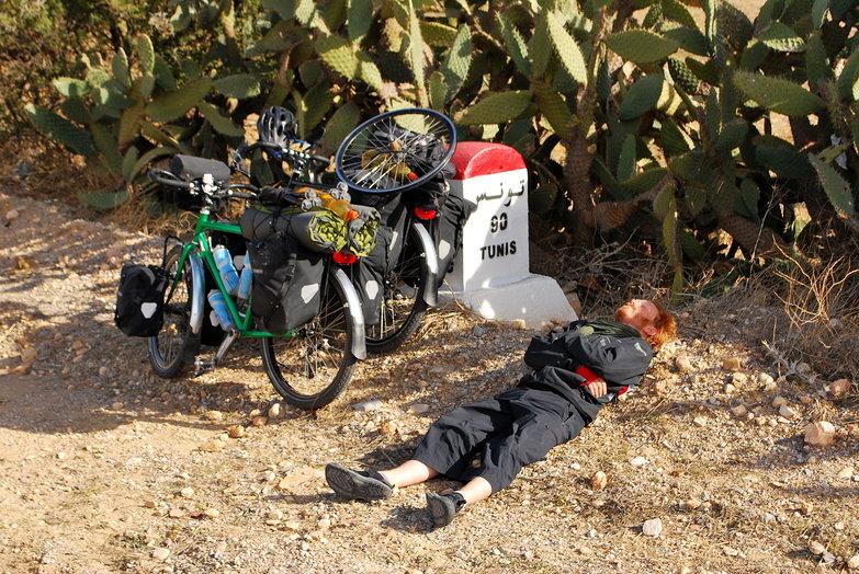 Tyler Resting