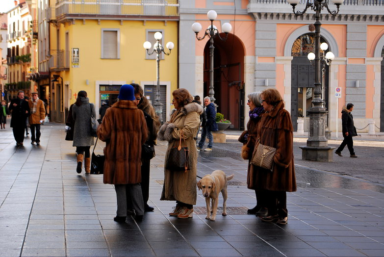 Italian Women in Furs