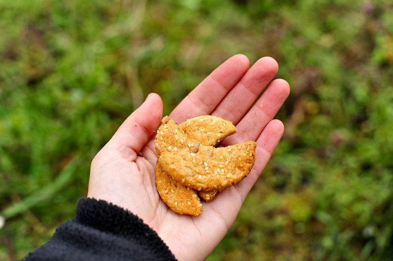Serbian Sesame Crackers