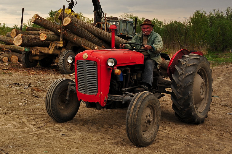Serbian Tractor Driver