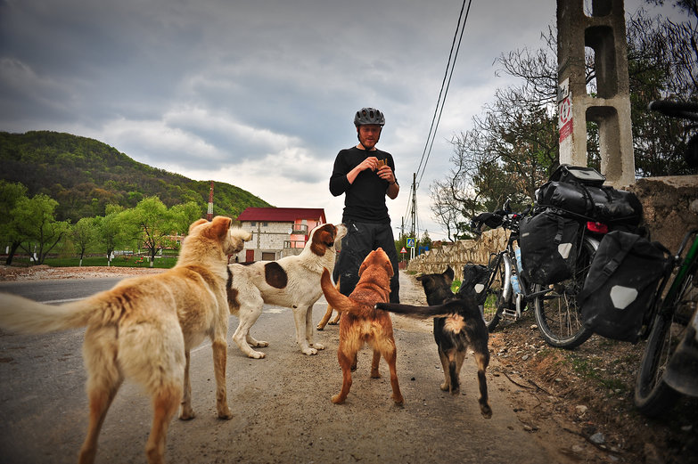 Tyler Feeding Romanian Dogs