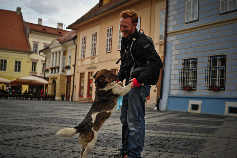 Sibiu Stray Jumping on Tyler