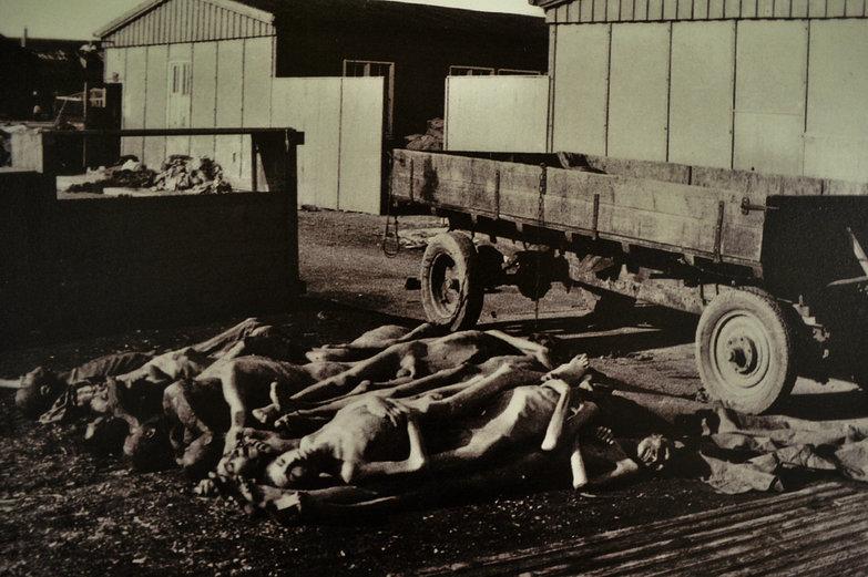 Dachau Corpses