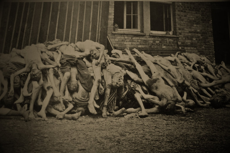 Dachau Concentration Camp Bodies