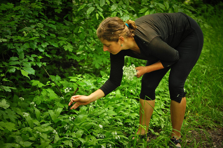 Tara Foraging Wild Garlic