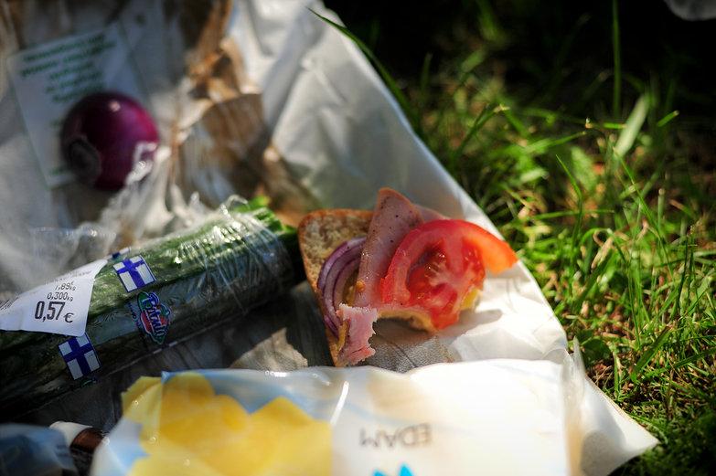 Helsinki Pincnic