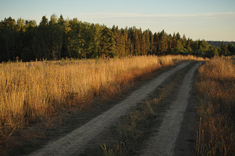 Russian Road through Field