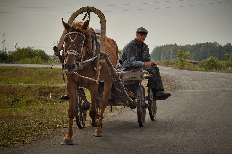 Siberian Man on Horse-Drawn Cart