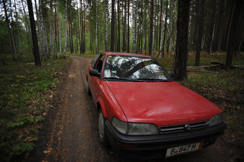 LRC in Siberian Forest