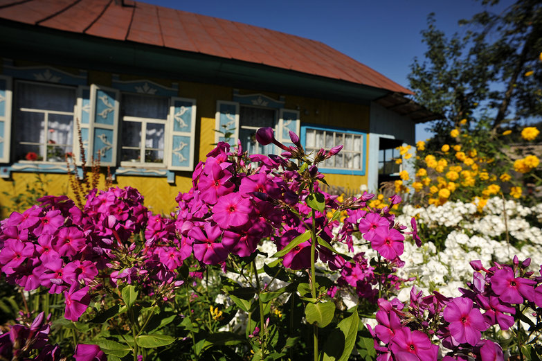 Russian Flowers & House