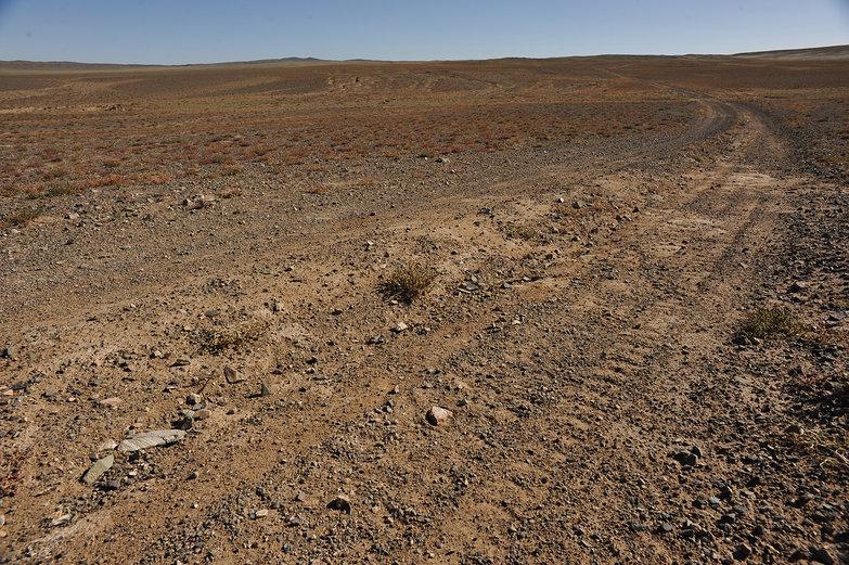 Mongolian Track
