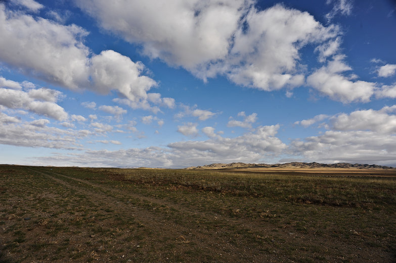 Mongolian Steppe