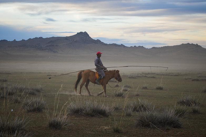 Mongolian Cowboy