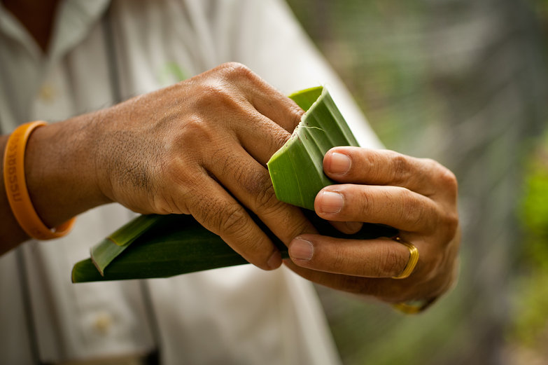 Making a Banana Leaf Container