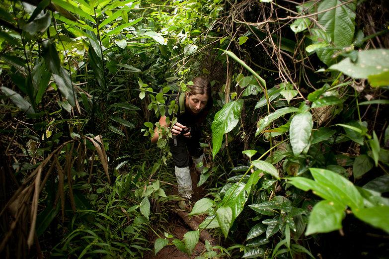 Tara in the Jungle
