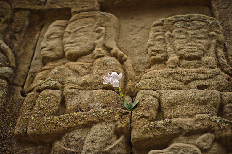 The Bayon Bas-Reliefs w/Flower