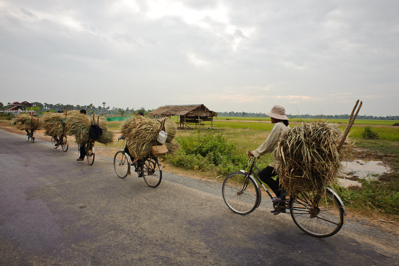 Cambodians Cycling