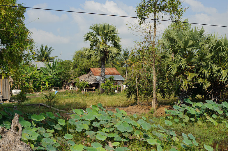 Cambodian House
