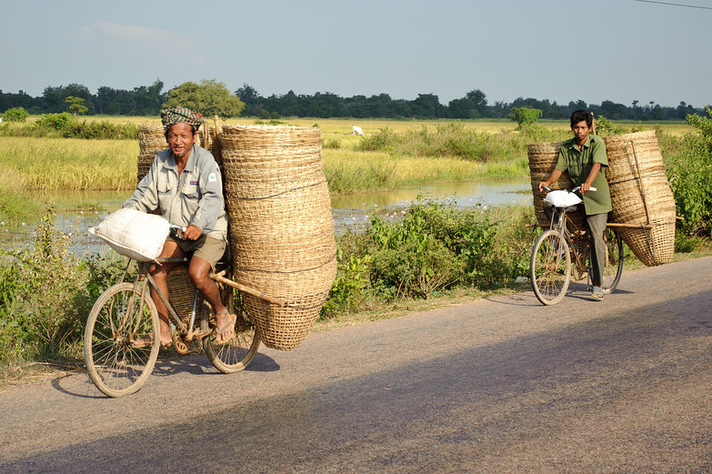 Cambodian Basket-Carrying Bicyclists
