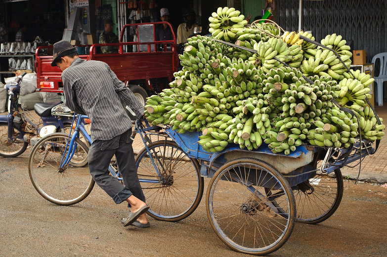 Cambodian Man & Green Bananas on Bicycle