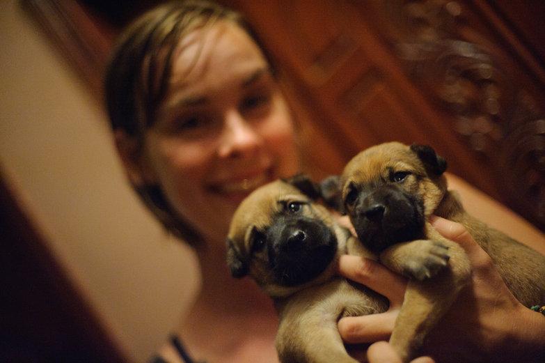 Natasha & Cambodian Puppies